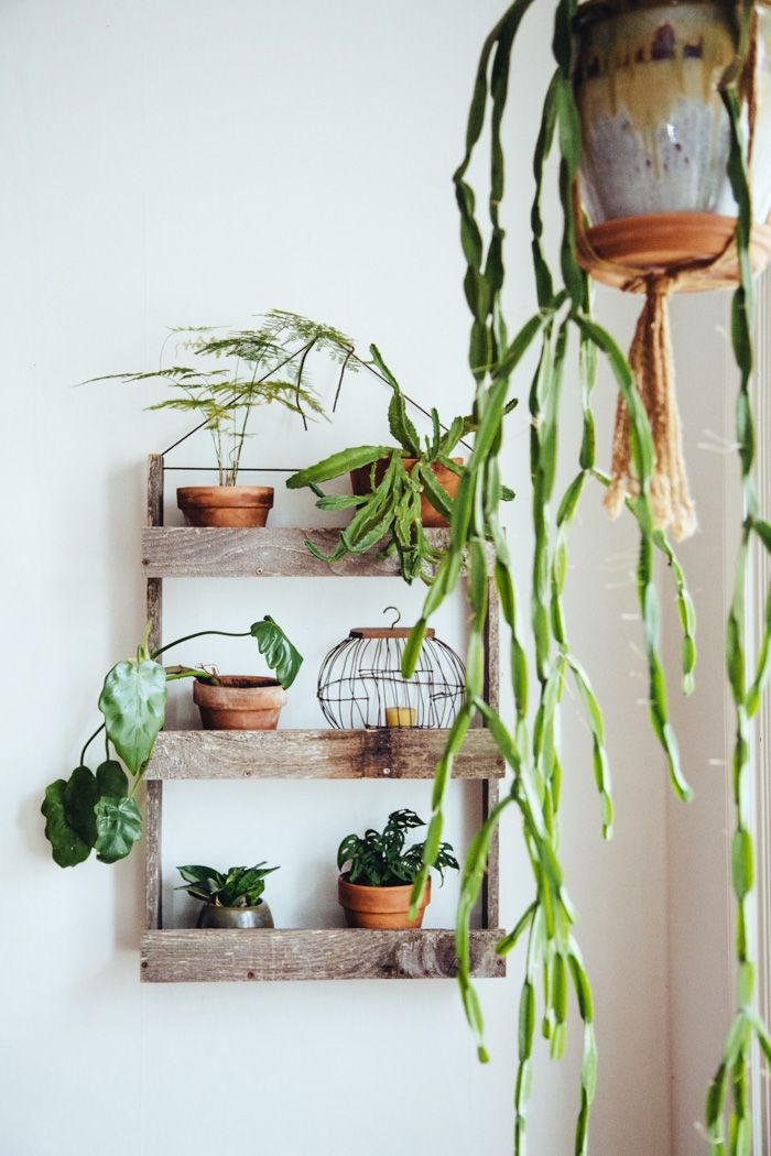 a simple and pretty vertical garden #decor #plantas #pallet #greenthumb