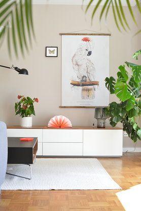 Zimmerpflanzen - für ein grünes Zuhause! #urbanjungle #zimmerpflanzen #pflanzen #pflanzendeko #deko #indoorplants #plants #monstera #zimmerpalme #dekoideen #decor #home #interior #tropical