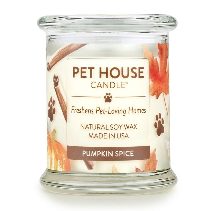 Pumpkin Spice Pet House Candle: Pet Odor Candle 100% Soy Wax – One Fur All