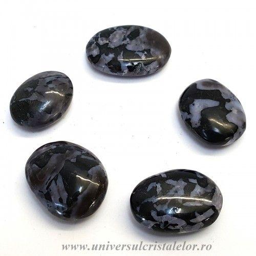 Merlinit polisat ( opal dendritic )