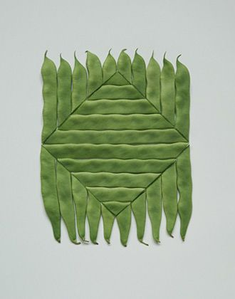 Sakir Gökçebag's - Edible Art, Green beans