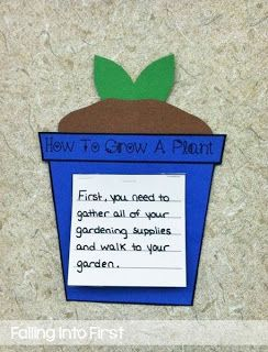 How To Grow A Plant - Informative Writing!!