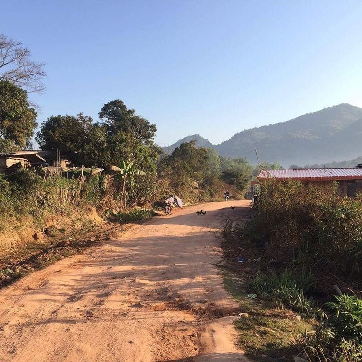 The far northern province of Phongsali is real rural Lao. You'll spend hours on bumpy clay roads the air is crisp and clear green mountains stretch all around and you'd better have brought your own loo paper #Laos #rural #travel #countryside #road #roadtrip #remote #landscape #photooftheday #photo #photography | Eat Drink Laos http://eatdrinklaos.com