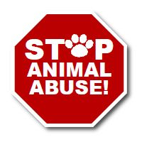 Stop Animal Abuse I really want to get involved with something like this, i can't stand STUPID IDIOTS who hurt animals.