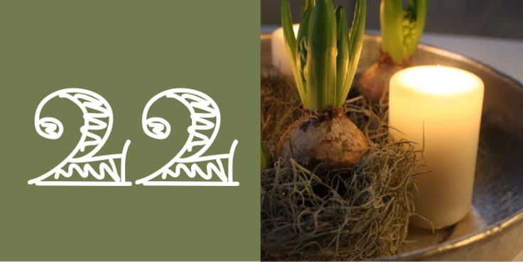DEKORATION MED HYACINTER OG MOS - Christmas-deko with hyacinths and moss