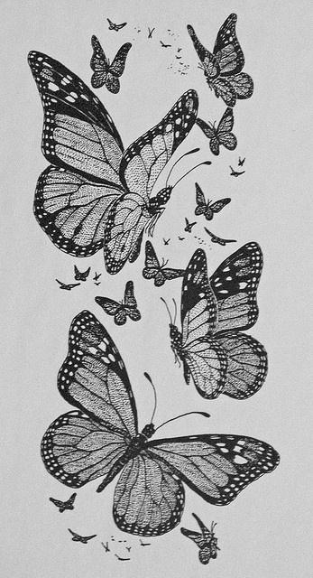 Drawing: Monarch Butterflies by Floyd Muad'Dib, via Flickr