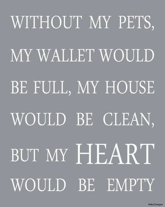 Without my pets, my wallet would be full, my house would be clean, but my hear would be empty