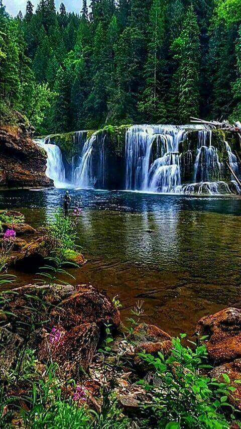 Forest River, Krásná Krajina Národního Parku Seoraksan, Jižní Korea