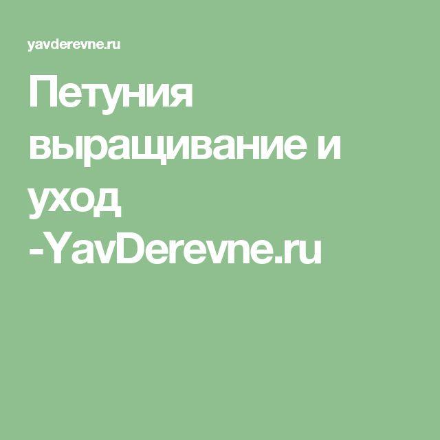 Петуния выращивание и уход -YavDerevne.ru
