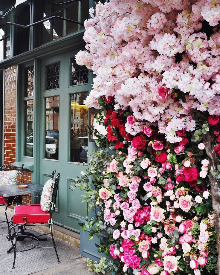 The Ivy Chelsea  Chelsea London UK Travel Explore London Days out in London Restaurants in London