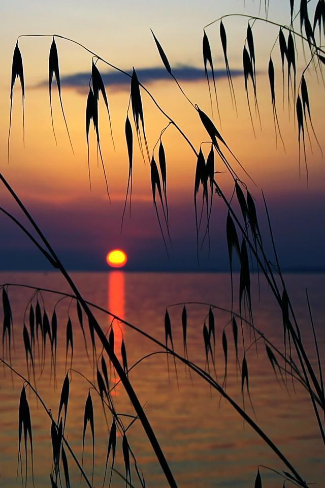 Sunset.. in Halkidiki, Greece