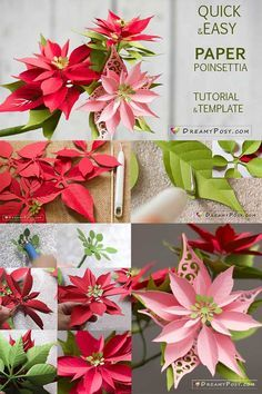 Paper Poinsettia template and step by step tutorial – D I Y – Töpfern
