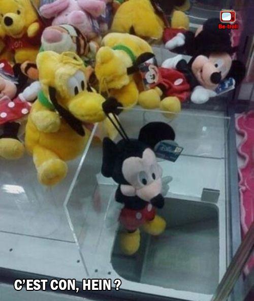 Dingo en rigole encore. #Mickey #Disney