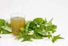 Sok z pokrzywy przepis - sok z pokrzywy