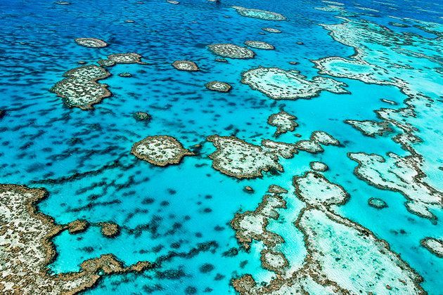Great Barrier Reef top things to do in Australia