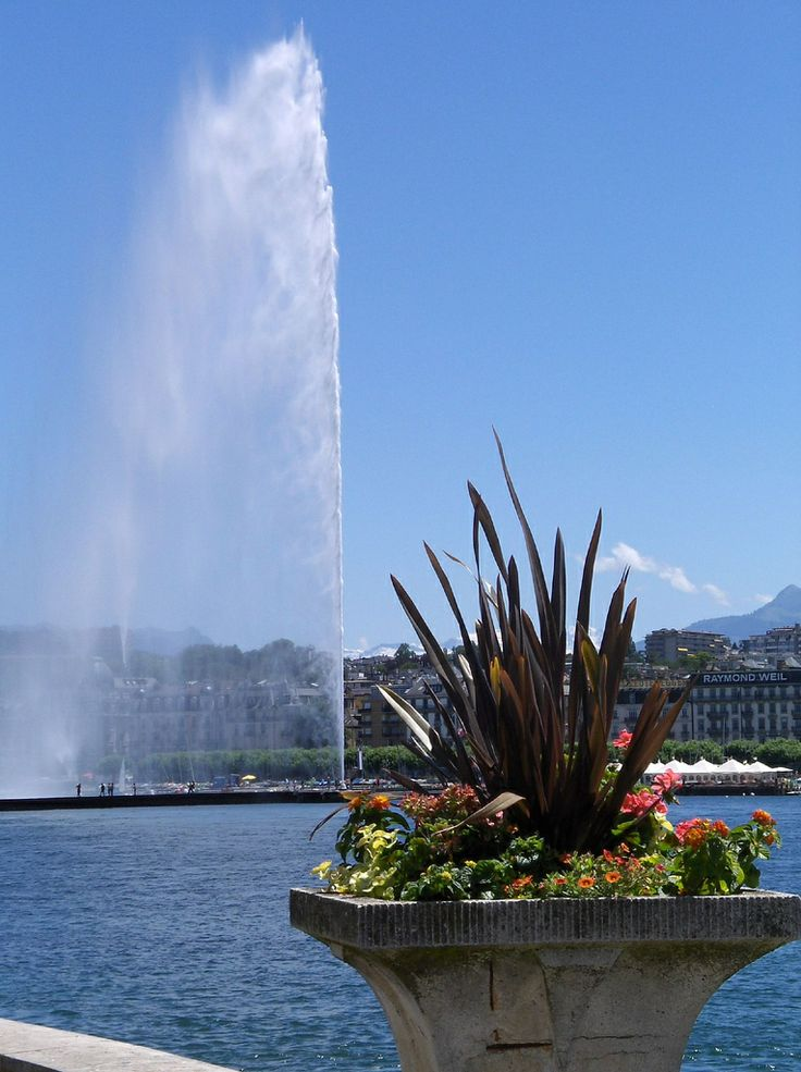 Geneva's fountain