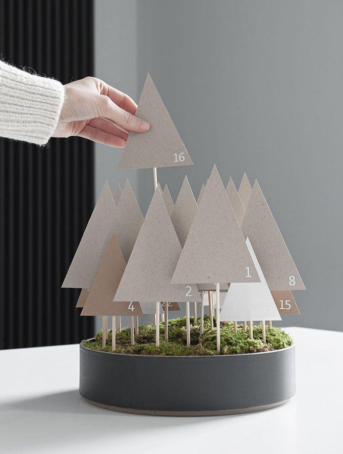 Weihnachtswald | bildschoenesdesign