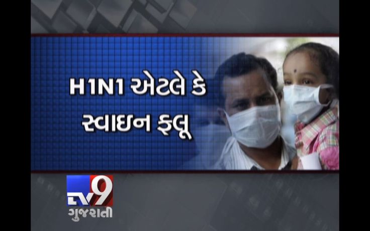Swine flu, also known as H1N1 type A influenza, is a human disease. People get the disease from other people, not from pigs. Symptoms of H1N1 swine flu are like regular flu symptoms and include fever, cough, sore throat, runny nose, body aches, headache, chills, and fatigue. Many people with swine flu have had diarrhea and vomiting.  Subscribe to Tv9 Gujarati https://www.youtube.com/tv9gujarati Follow us on Dailymotion at http://www.dailymotion.com/GujaratTV9