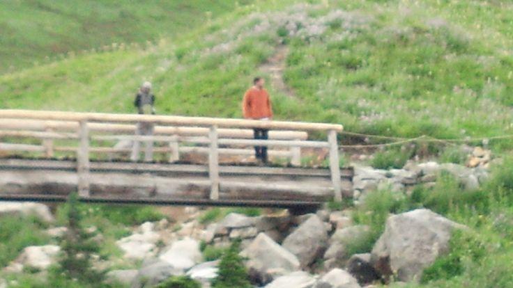 Robby on Bridge at Mount Rainer