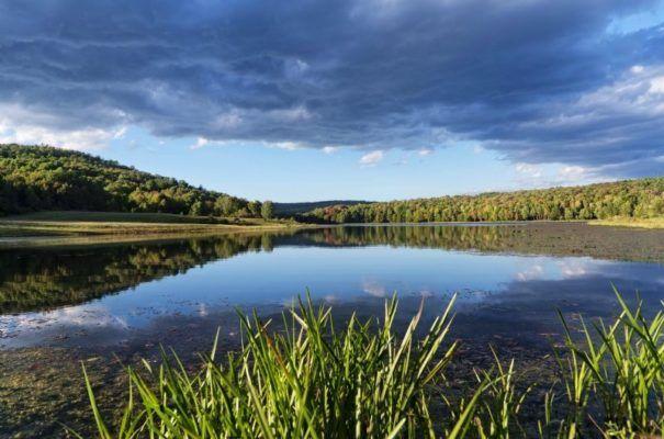 Strawberry Lake Land Liquidation Sale -blog.landflip.com