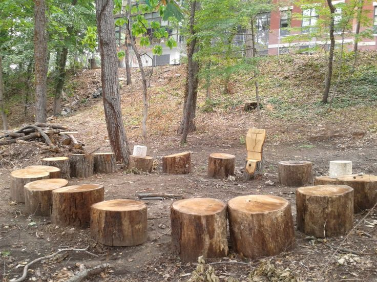 What do you think children can learn from being in a space like this outdoors?