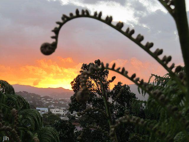 FreshTake Publishers (Photographer Jennifer Hammond): Sunset - Khandallah, Wellington New Zealand