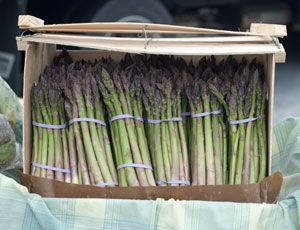 Perennial Vegetables. I only plant perennial flowers, so maybe these would work