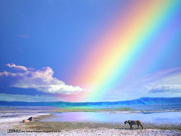 Best 25 paisajes hermosos gratis ideas on pinterest gif for Imagenes de animacion