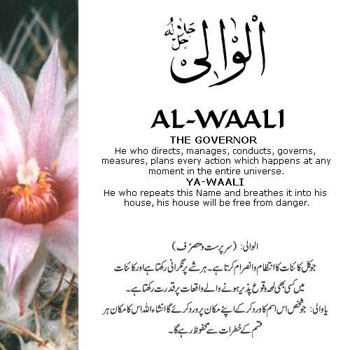 Al-Waali - The 99 Beautiful Names of Allah