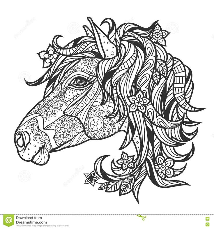 Abstract Horse Coloring Pages : Best images about coloring horse zebra on pinterest