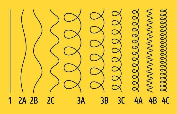 hair curls  wavy curl type тип твоего завивка от прямых до афро кудрей | Tipo de cabelo, Diferentes tipos de cabelo, Cabelo
