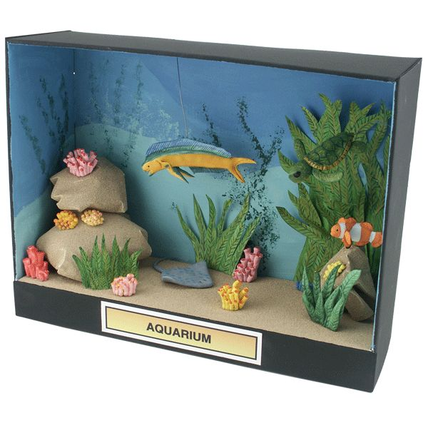 17 Best Images About Project Fish Tank On Pinterest: 13 Best Images About Dioramas On Pinterest