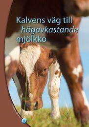 Beskrivning: Boken är ett hjälpmedel för mjölkgårdsföretagare när man föder upp kalvar till friska och produktiva förstagångskalvare. Boken är uppdelad enligt kalvens utveckling i avsnitten:  Omvårdnad 0–3 mån,  Trygg tillväxt 3–13 mån, Seminering 13–15 mån, Dräktighet 16–24 mån, Förberedelse inför kalvningen och kalvning 22-24 mån. För varje utvecklingsstadium behandlas uppfödningsförhållandena, utfodringen, skötseln och faktorer som påverkar hälsan på ett åskådligt sätt.