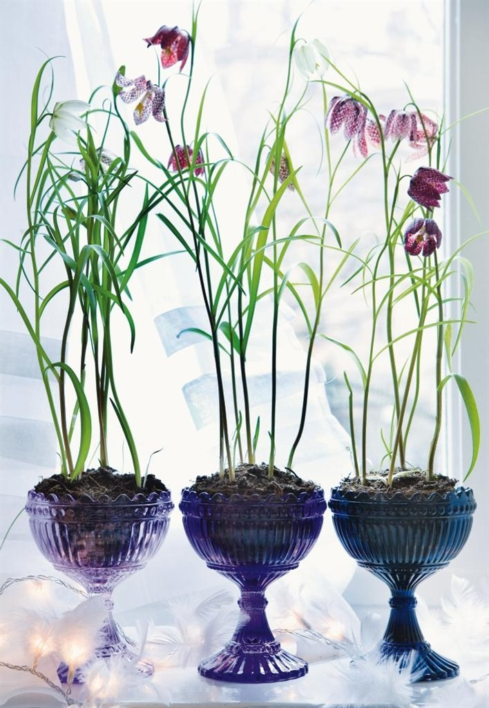 so doing this...plant spring bulbs in vintage art glass goblets/candy dish