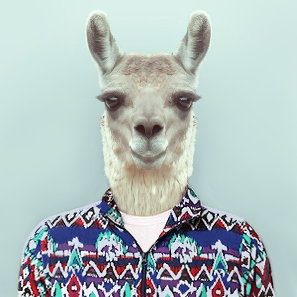 Ugly Sweater Party Llama
