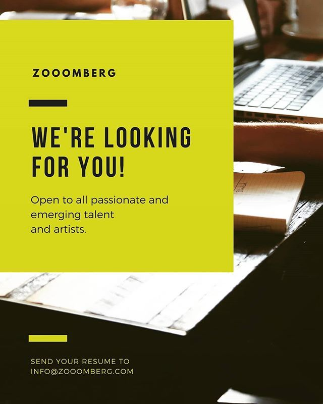 Hey! Hey! Hey! Zooomberg is on the lookout for a Talented