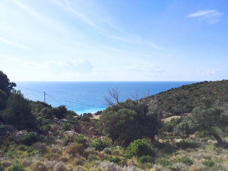Πωλείται οικόπεδο 5000 τ.μ. στο Πόρτο Κατσίκι Λευκάδας, σε πολύ κοντινή απόσταση από τη θάλασσα από τη μεσιτική εταιρία Ελλήνων Γη.