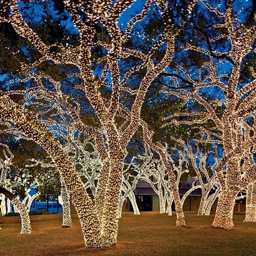 the twinkliest drive in texas