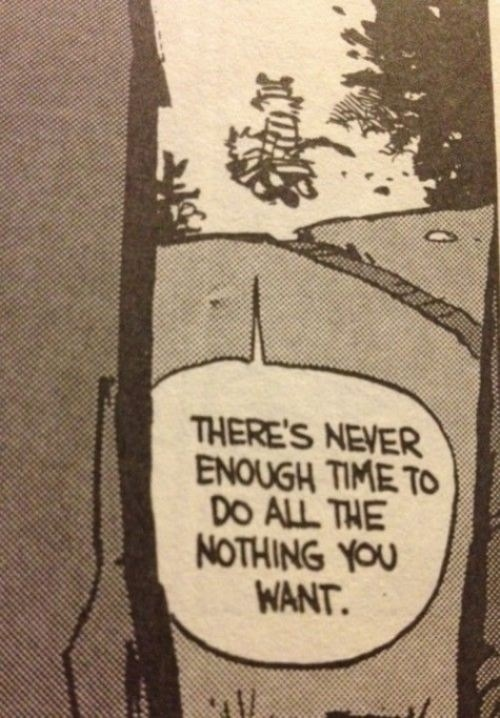 There's never enough time to do all the nothing you want.  Calvin & Hobbes, Bill Watterson
