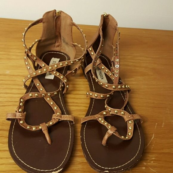 Cute Steve Madden Gladiator sandals sz 11 So cute! Steve Madden brown gladiator sandals with gold studs! Size US womens 11. They are Gently used, a little smooshed from storage but lots of wear left. The front of each is a tad scuffed but otherwise in great shape! Steve Madden Shoes Sandals