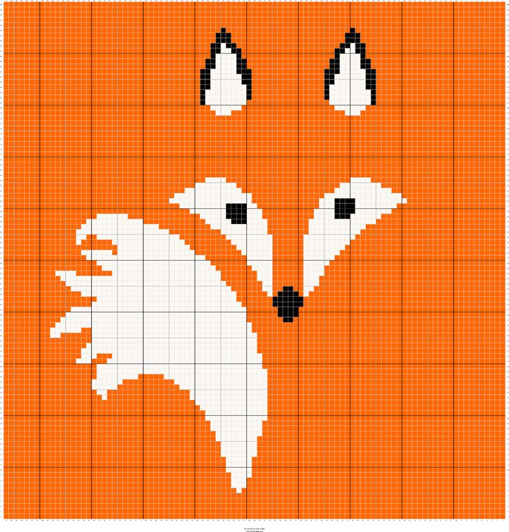 Fox C2C ... going to learn a new skill with this one and it even looks simple enough that I might be able to get it done in a month.