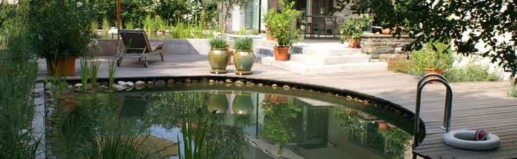 17 Best Ideas About Swimming Ponds On Pinterest Natural Pools Natural Backyard Pools And