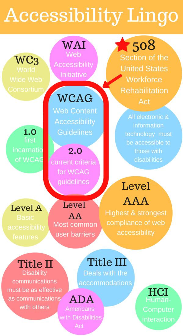 Web Accessibility Lingo Infographic