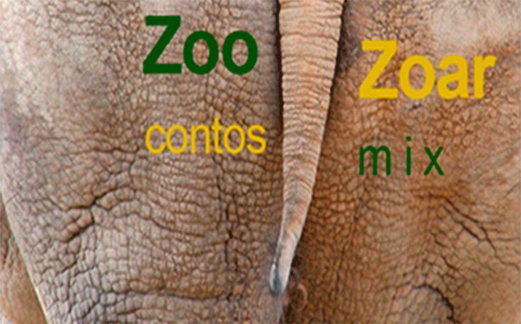 zoo_zoar