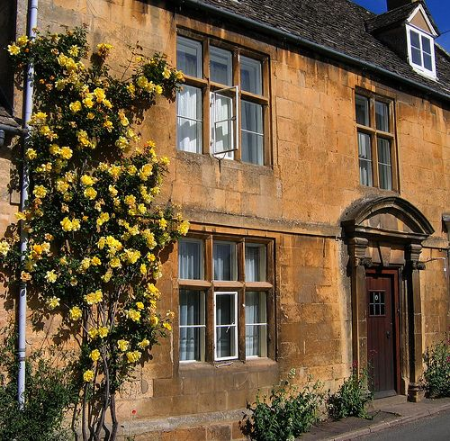 """22 May 2007.  """"Yellow Roses on a May Morning in the Village of Blockley in the Cotswolds""""   [JR P site on Flickr - Photo Sharing!]"""