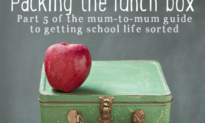 Back to school 101: Packing the school lunch box - Kidspot