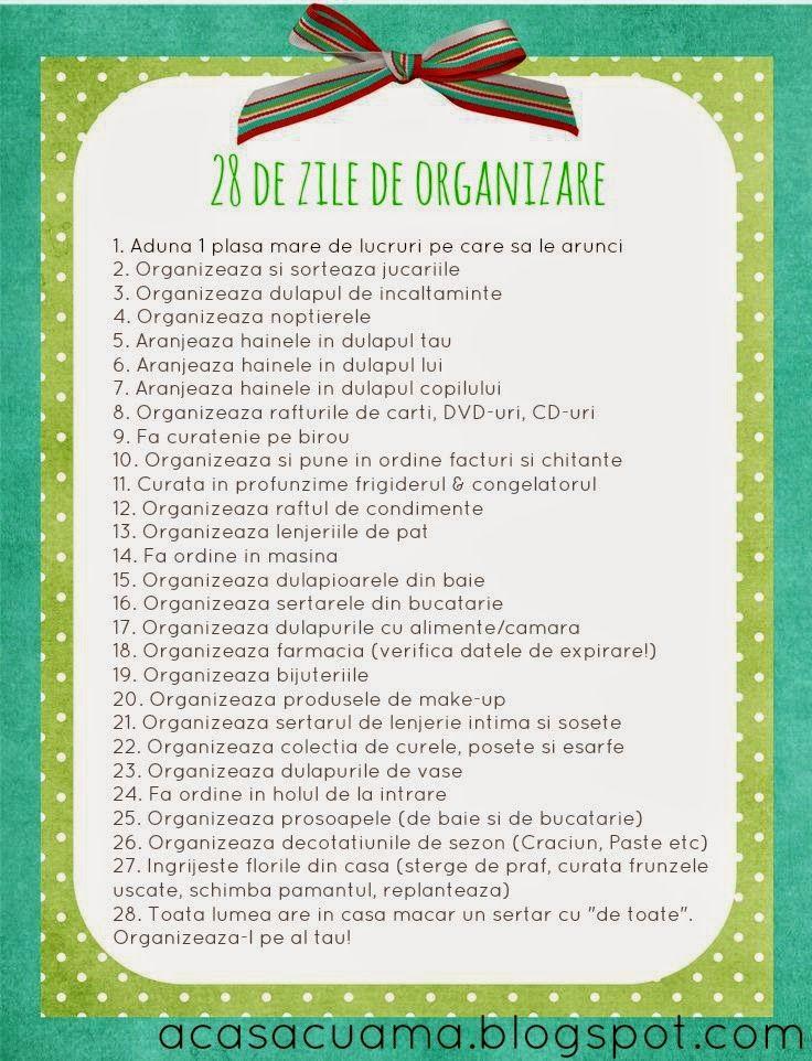 28 de zile de organizare - Ama Nicolae