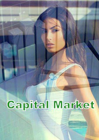 Capital Market - OnlineeFinance | Explore The Finance | Auto Insurance | Car Insurance | Financial Management | Education | Leasing