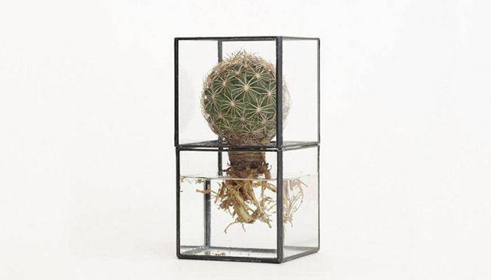 新しい発想と美しいルックスに心惹かれます。図形のガラスとメタルフレームで仕上げたら、こんなに独創的な花瓶ができ […]