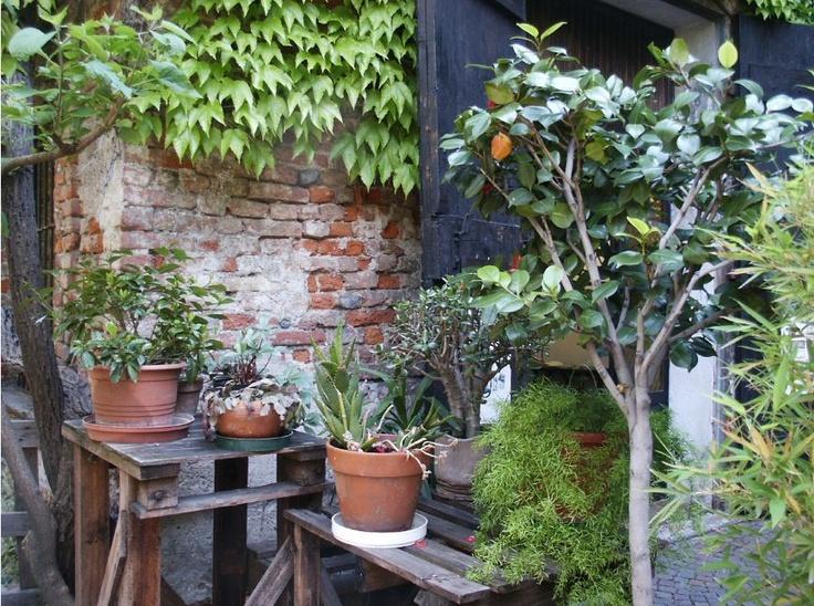 Inner garden :Navigli - Milan